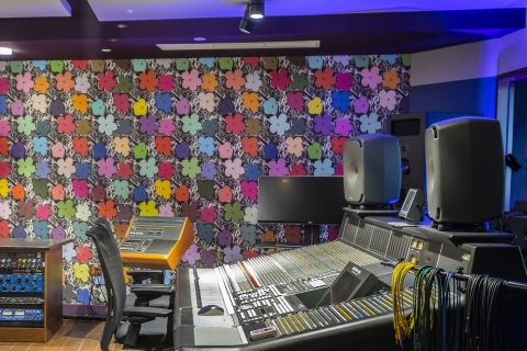 Our Small Flowers pop with a fresh, feel-good vibe. Inspired by Andy Warhol's original 1964 silkscreen based on a photograph of Hibiscus, this is one of our DIY EZ Papes designs that we printed on acoustic fabric to satisfy soundproofing needs in studio.
